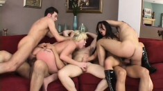 A room full of cocks goes after two horny bitches in a hot gangbang