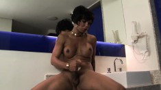 Elegant Latina shemale with big hooters Brisa pleases her long stick