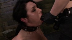Isa Mendez, Abbi Roads, Lexy Villa, And Brooklyn Daniels Go All Out In A Lesbian Bdsm Session