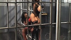 Chubby black hookers doing hard time fuck each other in their cell