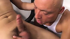 Young stallion drills his older trainer with his vigorous boner