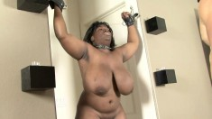 Huge tit ebony chick is strung up and spanked before he titty fucks her