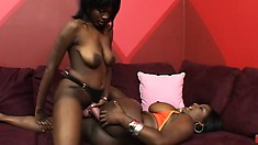 Busty black babe gets her pussy wrecked by her lesbian lover